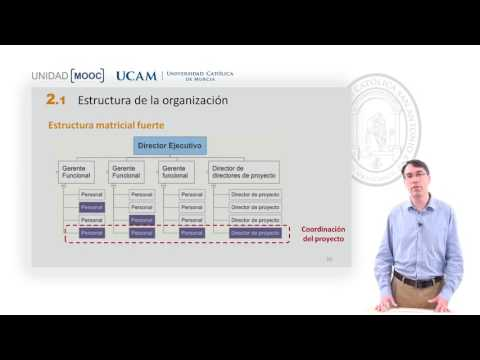 Mooc Pmp 2 1 Estructura Organizacional Youtube