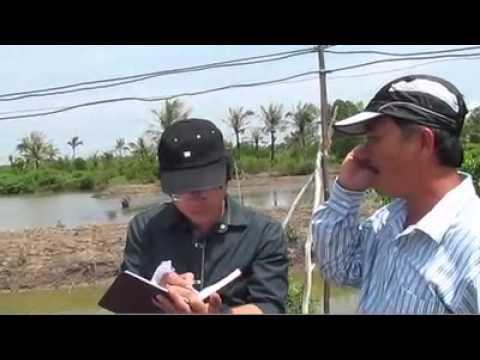 Ap dung Nano Colpa trong nuoi tom cong nghiep - Phan 1