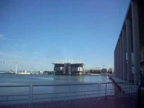 The Lisbon Oceanarium video 32