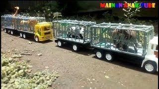 Truk Mainan Angkut Hewan -  Mainan Anak Tube