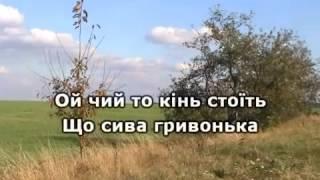 ОЙ ЧИЙ ТО КІНЬ СТОЇТЬ КАРАОКЕ гурт ЕКСПРЕС