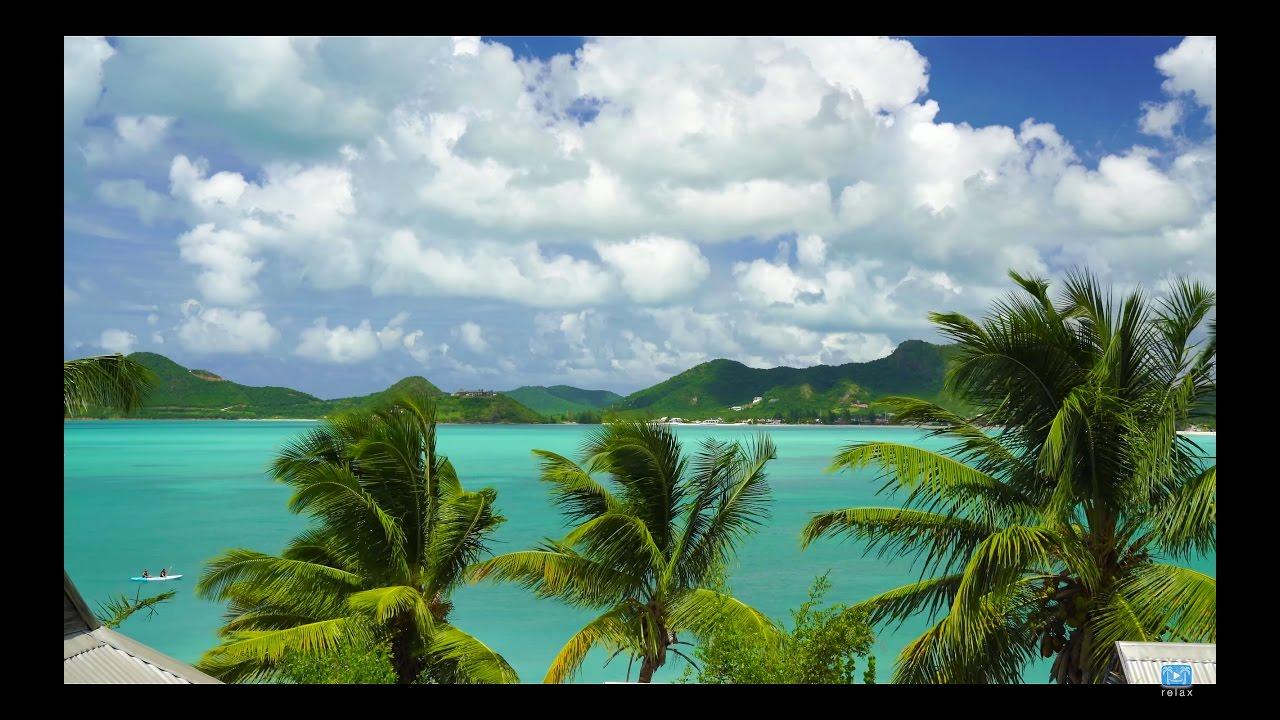 Caribbean Relaxation: 4K UHD Nature Screensaver: Caribbean Palm Vista 1HR Static
