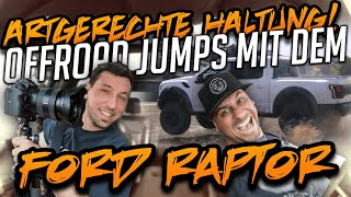 JP Performance - Artgerechte Haltung | Offroad Jumps mit dem Ford Raptor