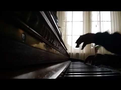 "Jasur khalilov  - composer, piano - Каприз ""То кай.."" (Russelsheim, Germany 1.02.2018)"