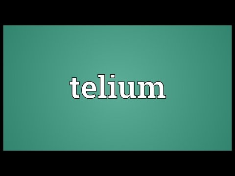 Header of telium