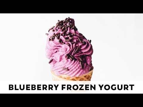 Vegan Blueberry Frozen Yogurt (no-churn!)