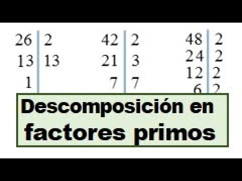 Descomponer en factores primos el numero 24, 26, 42, 48 - YouTube