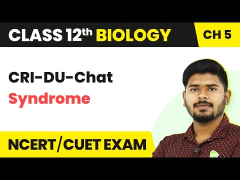 CRI-DU-Chat Syndrome | Principles Of Inheritance And Variation | Class 12th | Biology | In Hindi
