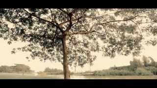 HD Phố Thiệp hồng - Trần Tuấn Lương
