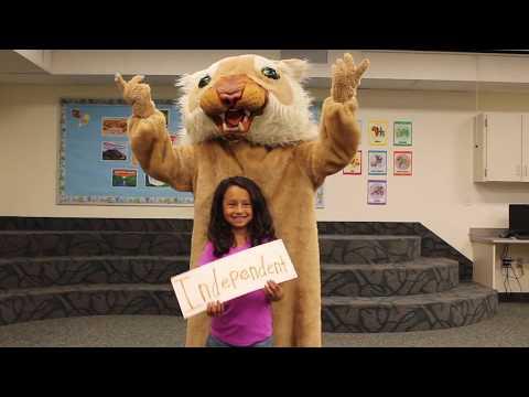 Wildcat PRIDE (Music Video)