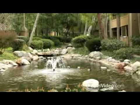 River Oaks Apartments In Lake Forest Ca Forrent Com