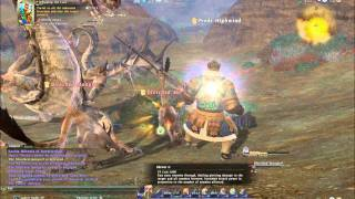 FFXIV Level 40 Leve Whipping the Curs ★-35 Lancer 46 Physical Level