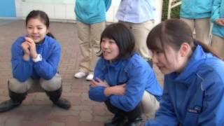 しながわ水族館:http://www.aquarium.gr.jp/index.html イルカと踊ろう...