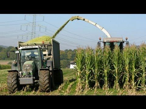 Bioenergy Lempetal (US version)