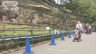 コーンで人と「距離」 多摩動物公園が営業再開(20/06/04)