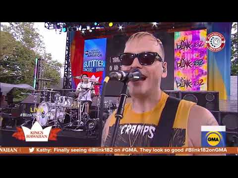 Blink-182 - Blame It On My Youth (live At Good Morning America) (PRO SHOT)