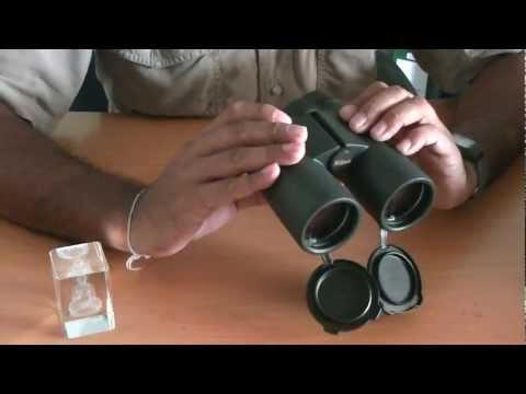 55370 Nikon Binoculars Monarch 5 16 215 56 Roof Prism Typ