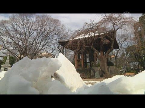 Сильнейший за полвека снегопад в Японии: 13 погибших (новости)
