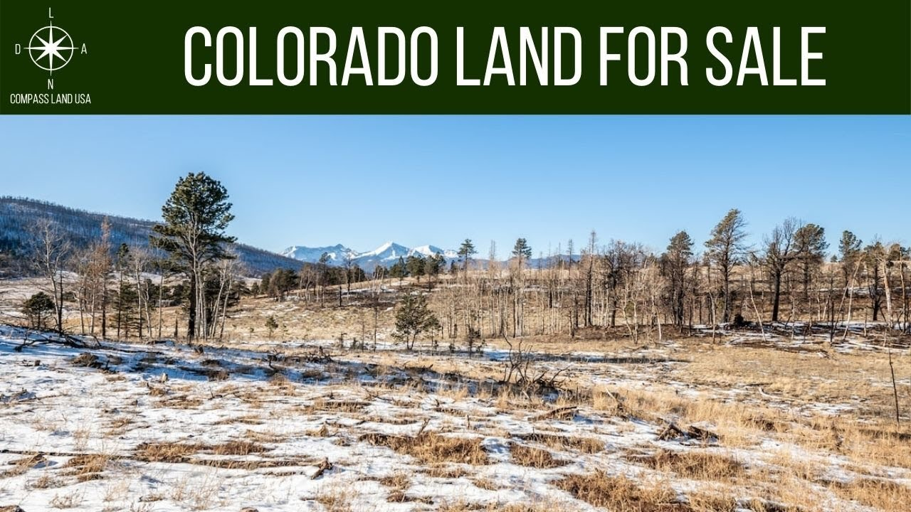 2.42 Acres - Power 650 Feet! In Forbes Park, Costilla County CO