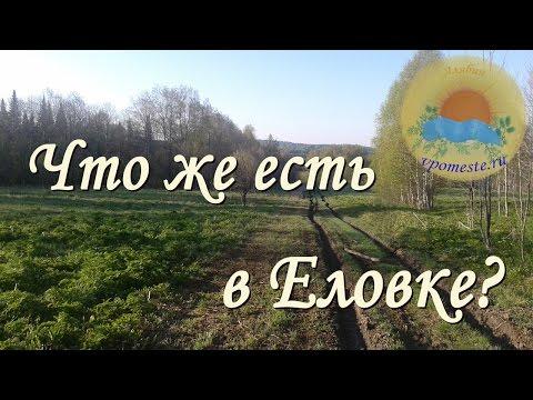 Поездка в Еловку Новосибирской области, 15.05.2015 / Домашнее хозяйство в родовом поместье