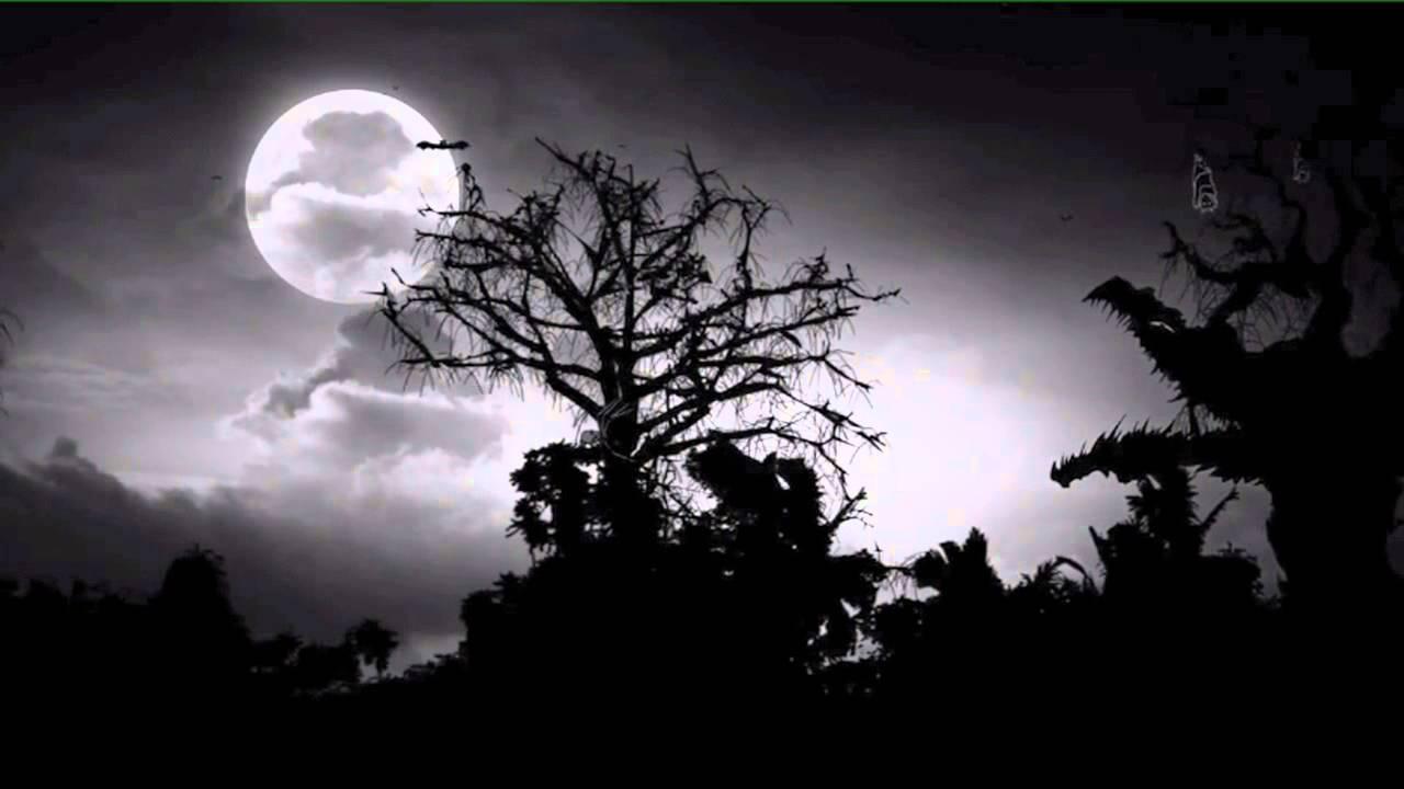 halloween song spooky spooky