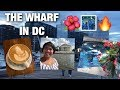 Paddleboating, Lattes, Botanical Garden, & Museums in D.C.