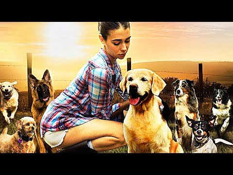 THE DOG LOVER streaming (2017)