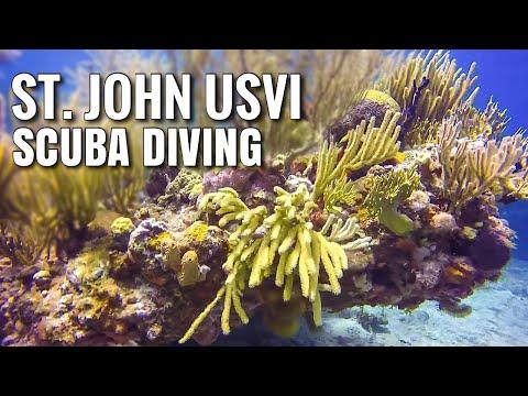 St. John, USVI 🇻🇮 Scuba Diving