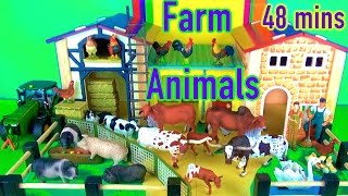 Learn about Farm Animals Dog Horse Peacock Rabbit Cows Kids Toys Animales de granja in English