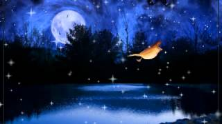 Elvis Presley-Dark Moon