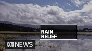 Drought-stricken western NSW receives best rainfall in years | ABC News