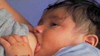 Breast-feeding lowers breast cancer risk in those with family history - IN60