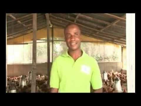 Volta Region Poultry Farmers Association - Part 1