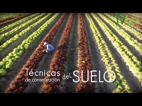 Cómo cuidar y Preservar los Suelos Honduras - TVAgro [Colombia]