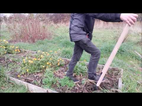 Utilisation d'une grelinette pour préparer le sol sans retourner la terre du potager