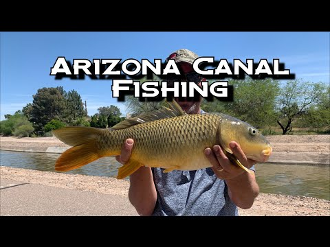 Arizona Canal Fishing