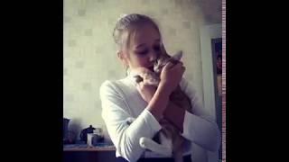 ЧЕМ Я КОРМЛЮ СВОЕГО КОТА!????? |Лера Cat and Лёва|.