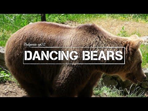 Dancing Bears | Bulgaria ep02