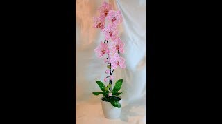 Розовая орхидея из бисера. Часть 5 - Итоговая работа.Pink orchid of beads. Part 5 - Final Work.