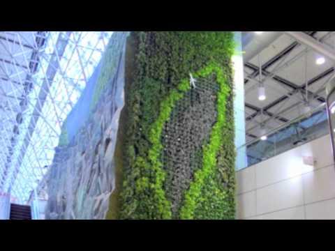 台灣南海室內立體植生牆系統
