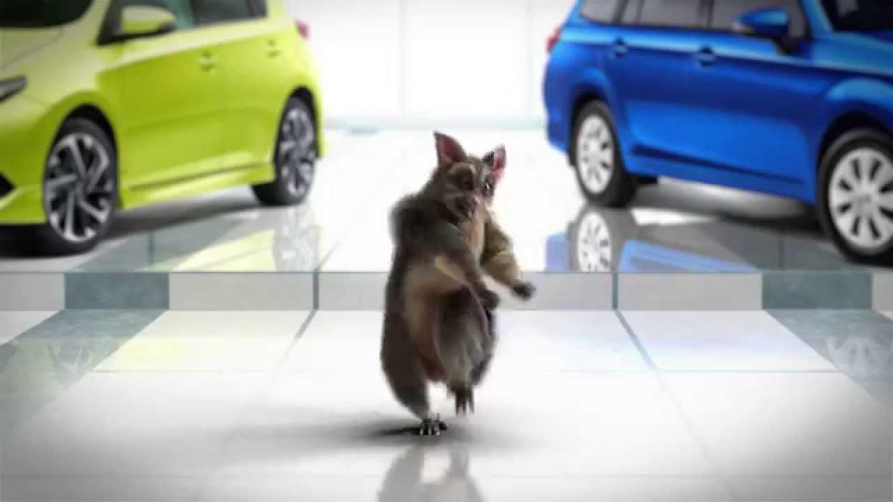 Possum Dance
