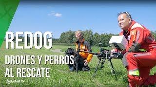 Así colaboran perros y drones en rescates y búsqueda de gente perdida- REDOG