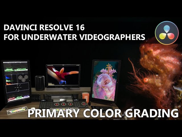 Davinchi Resolve for Underwater Videographers - Primary Color Grading