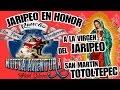 Video de San Martin Totoltepec