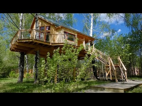 Couple build treehouse hotel in Russian woods