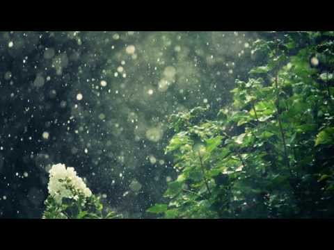 ASMR 10 Hours Soft Rain Healing Ambient Sounds for Deep Sleeping Meditation