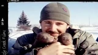 Кейси и Брут в мире медведей 4 серия