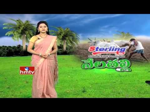 PM Modi NAM   Cold Storage For Mangoes   Ideal Woman Farmer   12-04-16   Nela Talli   HMTV