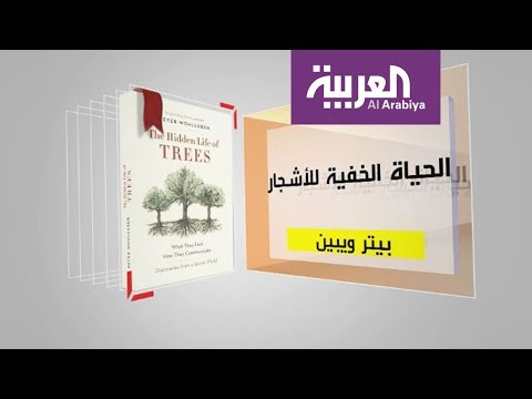كل يوم كتاب: الحياة الخفية للأشجار  - نشر قبل 2 ساعة