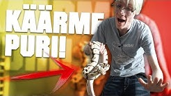 MUN UUSI KURISTAJAKÄÄRME PURI!